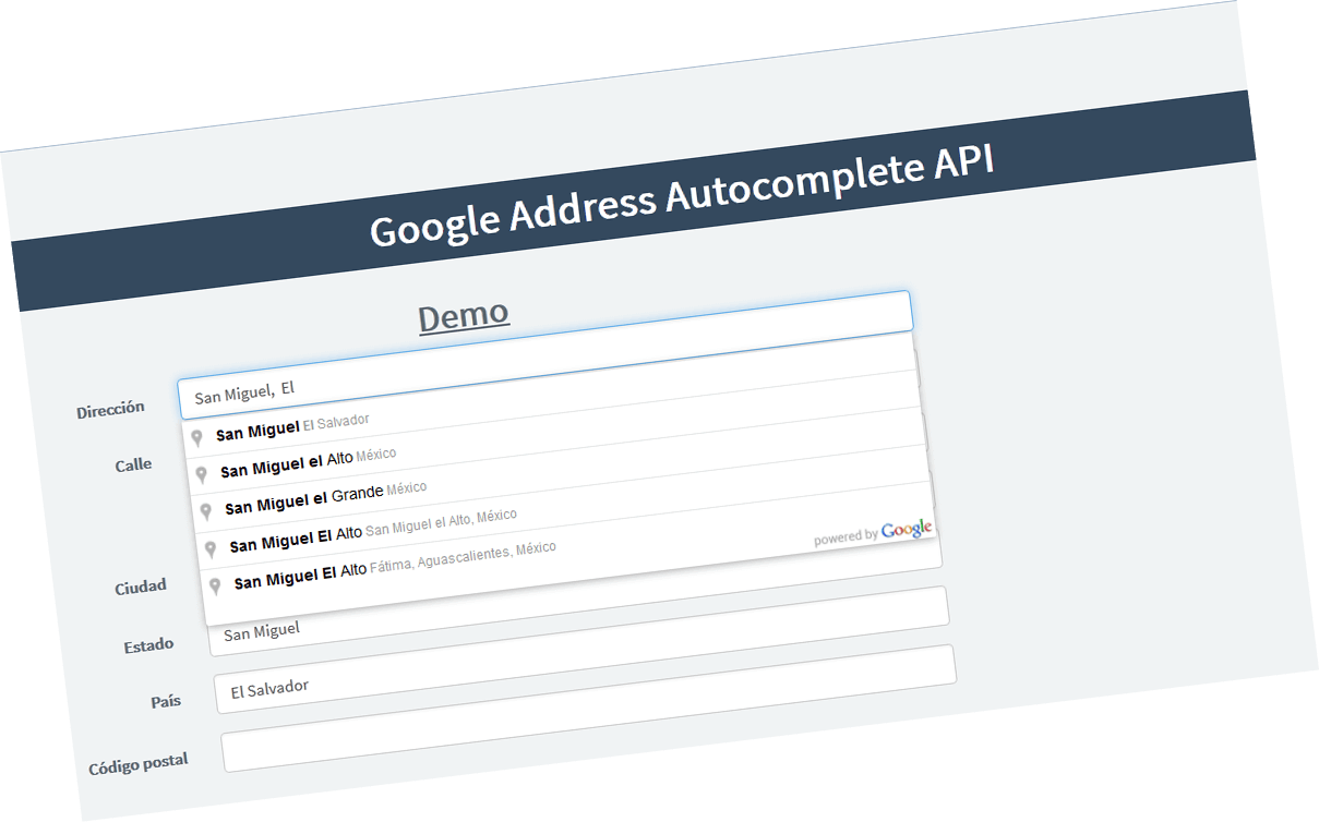 google_address_api